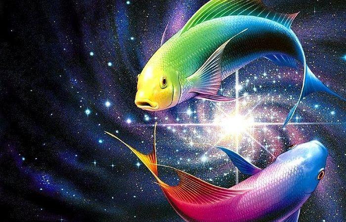 Сексуальная совместамость рыбы и девы