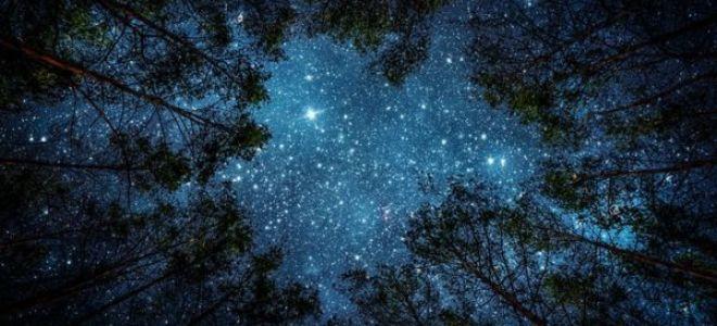 Какими отличительными чертами отличаются знаки зодиака в октябре