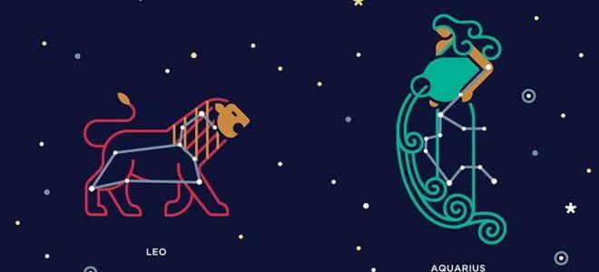 Описание совместимости в паре между водолеем и львом
