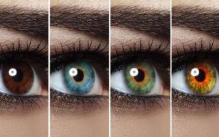 Цвет глаз и их значение для определения характера