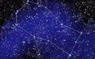 Астрология для начинающих — виды гороскопов