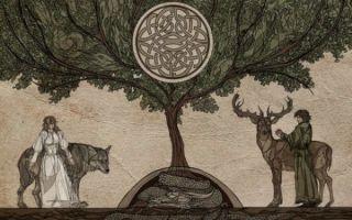 Гадание «Дерево желаний» узнаем всю правду у ветвистых друзей