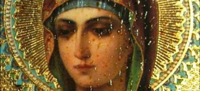 Богородица дева радуйся