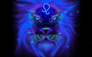 Совместимость скорпиона ильва — причины конфликтов иразногласий