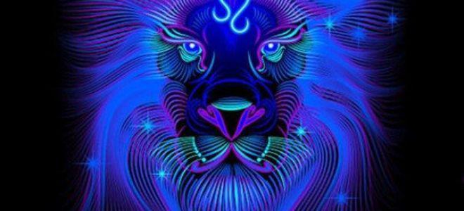 Совместимость скорпиона ильва