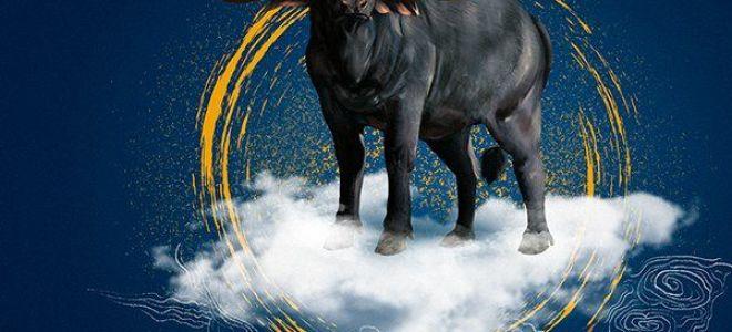 Совместимость быка икрысы