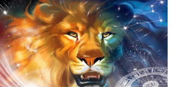 Совместимость телец-лев: союз противоположностей