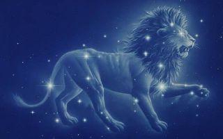 Знак зодиака лев — описание и характеристика для мужчин и женщин