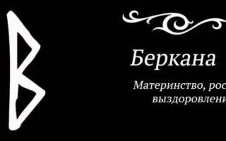 Описание и сакральное значение руны Беркана (беркано, berkano)