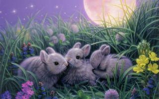 Как понять, к чему снится заяц — толкование сна
