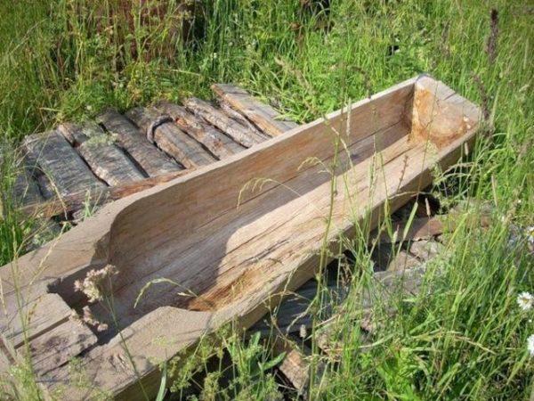 Сонник крышка от гроба стоит в подъезде - к чему снится видеть это во сне