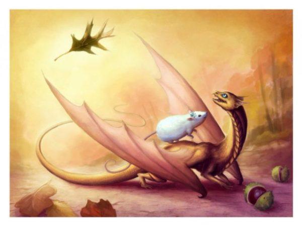 Крыса - Дракон