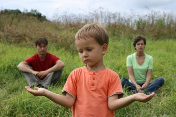 родительские программы