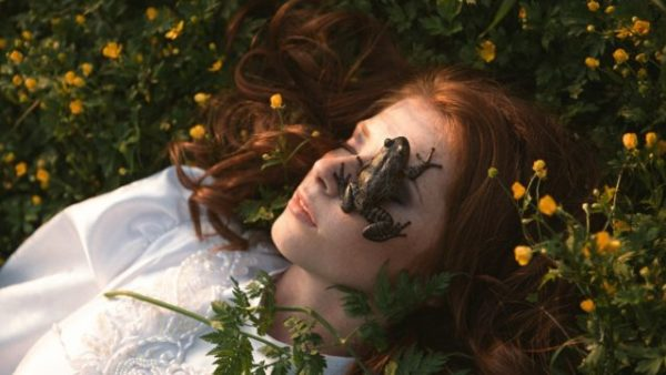 лягушка снится женщине