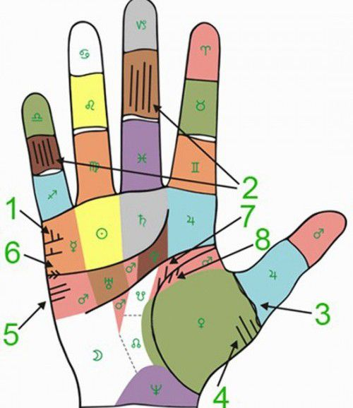 Palmistry: line of marriage and children with explanations and photographs