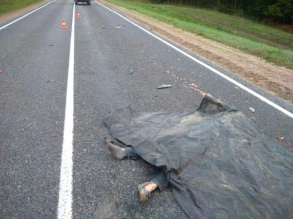 приснился труп на дороге