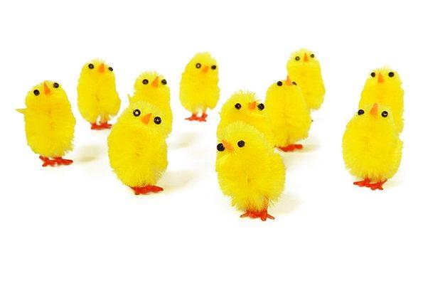 игрушечные цыплята