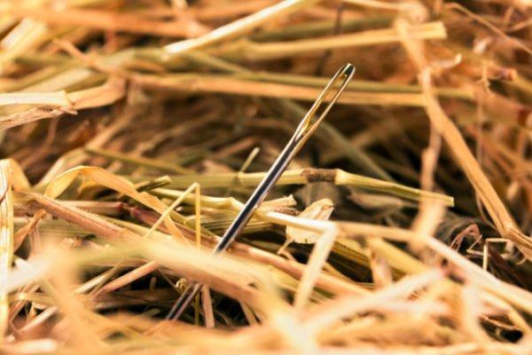 игла в стоге сена