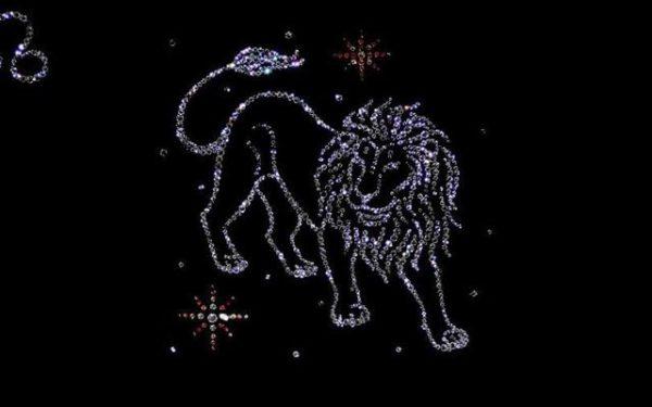 Лев и водолей совместимость знаков зодиака в любовных отношениях семейной жизни работе дружбе